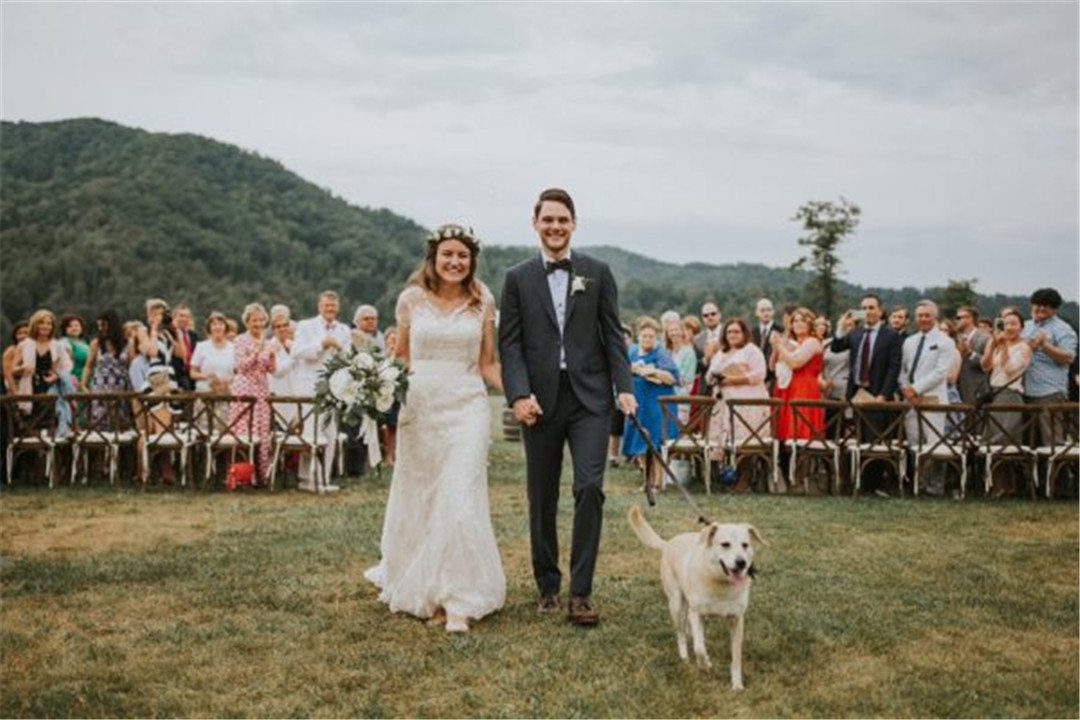 we-love-how-this-couple-incorporated-their-dog-into-their-asheville-wedding-31-600x400.jpg